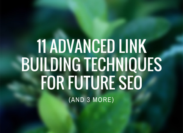 Advanced link building techniques.